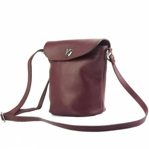 Chloe leather Cross-body bag